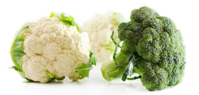 brocoli coliflor cerebro